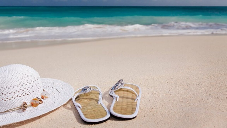 ציליה לים חכמים בשמש נהנים מהצל