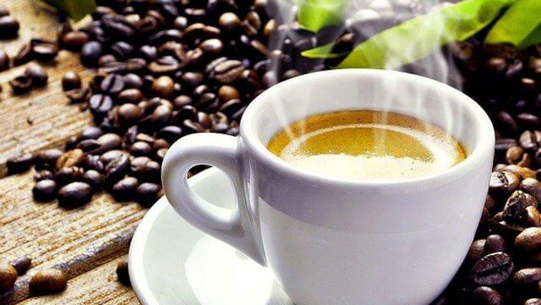 מהם פולי קפה פרימיום?