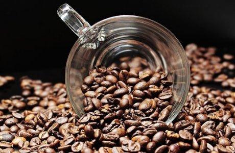 תהליכי ייצור הקפה השונים