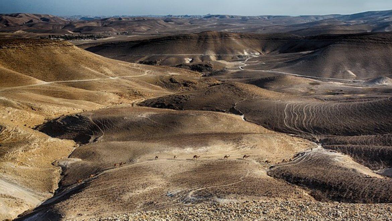 צימרים לזוג במדבר – חווית רומנטית משגעת