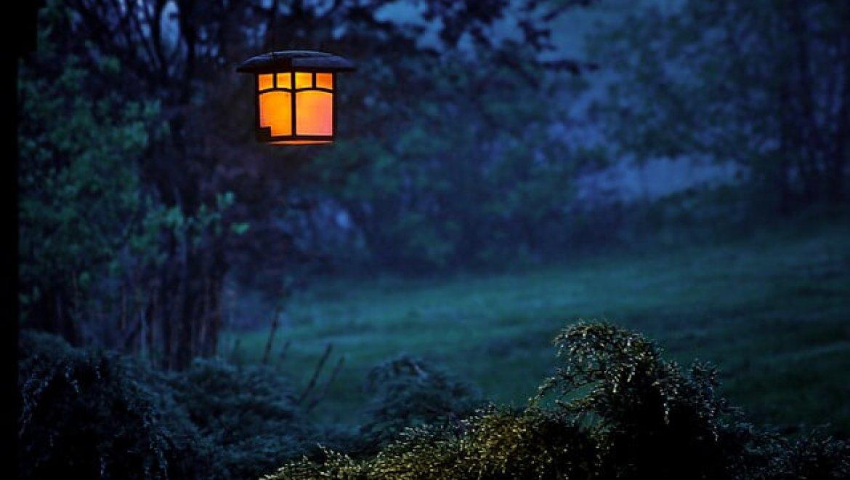 גופי תאורה זולים לגינה